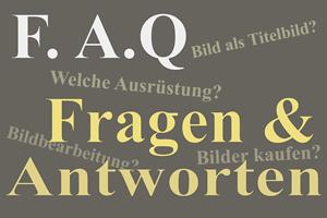 Text-Thumbnail_Webs-Vorschau