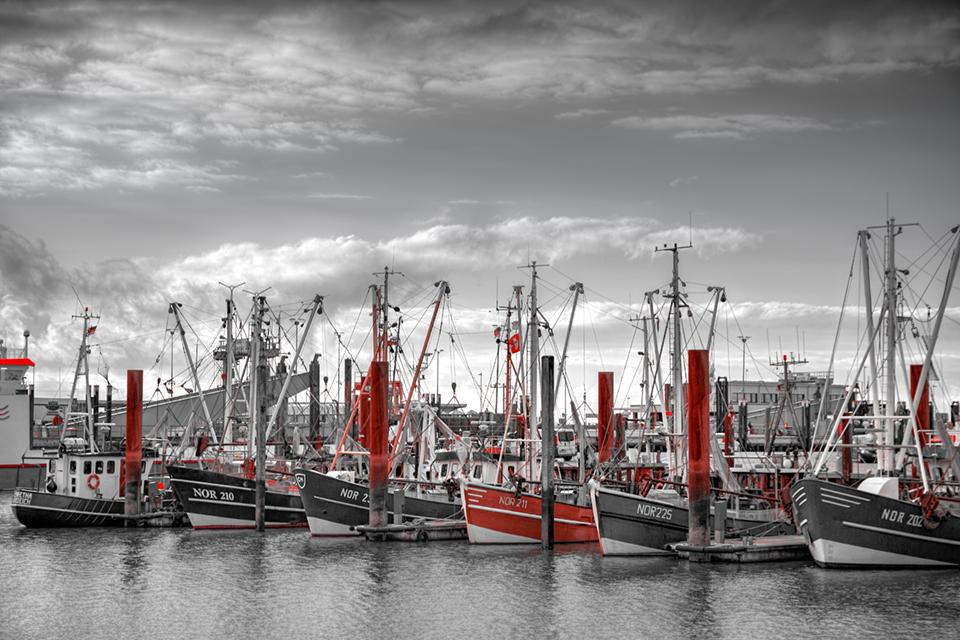20160308-Hafen-Norden-Color-Key_Webseite-Beitrag